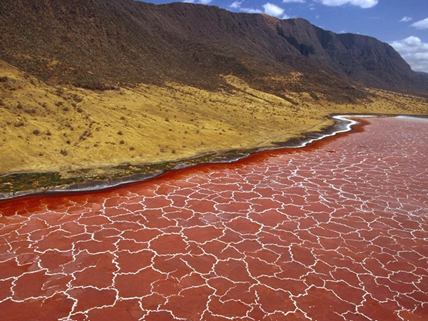 Озеро Натрон на севере Танзании