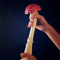 Продукты-афродизиаки грибы