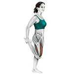 Растяжка передней мышцы бедра