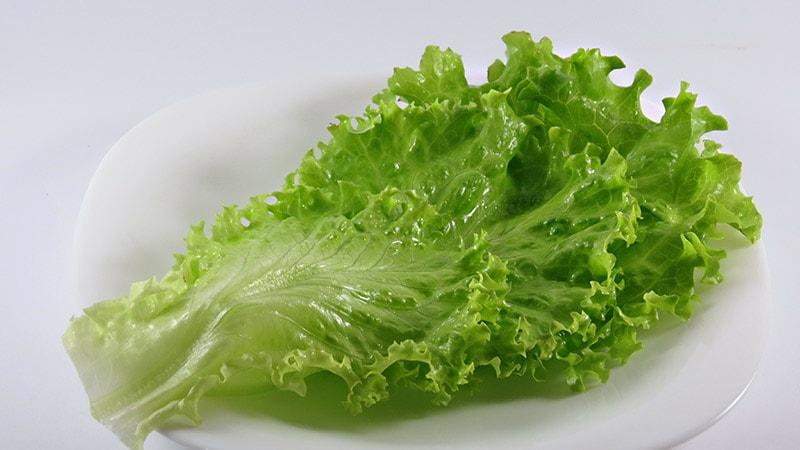 Шаг 3 - подготовка листьев салата ромэн
