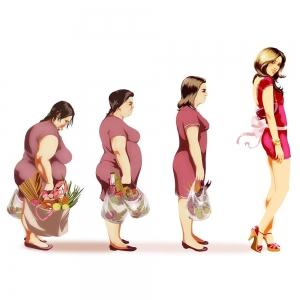 Как правильно питаться, чтобы похудеть