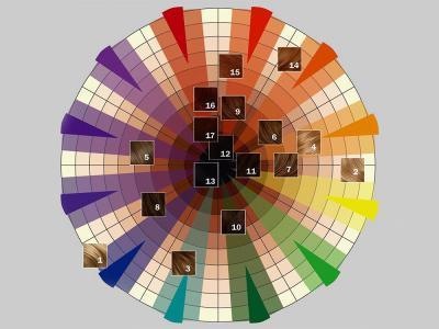 Правила цветового круга при окрашивании волос